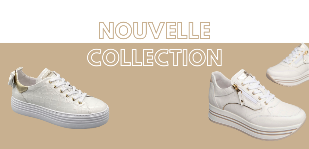 Presentation nouvelle collection 2021